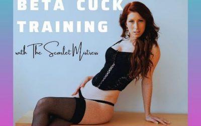 Beta Cuck Training – New Erotic Audio Discounted for June!